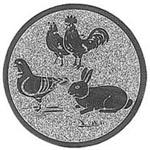 163. Kip / konijn / duif