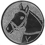 67. Paard